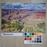 Tableau dibond - Matisseo