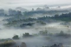 Brume dans la vallée